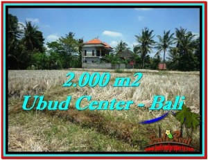 Exotic PROPERTY 2,000 m2 LAND FOR SALE IN Sentral Ubud TJUB524