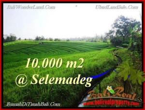 FOR SALE Magnificent LAND IN Tabanan Selemadeg BALI TJTB217
