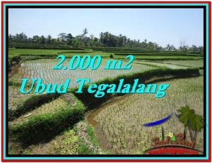 FOR SALE Exotic LAND IN Ubud Tegalalang BALI TJUB529