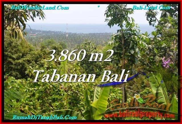 Beautiful PROPERTY 3,860 m2 LAND IN Tabanan Selemadeg FOR SALE TJTB236