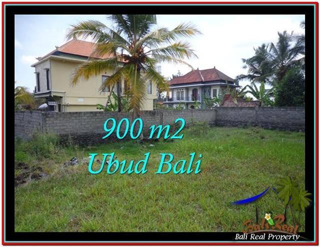 Affordable LAND SALE IN Ubud Tampak Siring BALI TJUB532