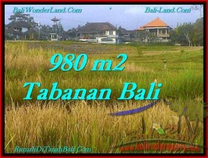 Magnificent 980 m2 LAND IN TABANAN BALI FOR SALE TJTB244
