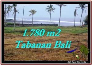 Exotic PROPERTY 1,780 m2 LAND FOR SALE IN Tabanan Selemadeg TJTB249