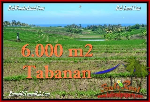 FOR SALE Exotic PROPERTY 6,000 m2 LAND IN TABANAN BALI TJTB268