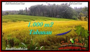 Affordable PROPERTY 1,000 m2 LAND SALE IN TABANAN BALI TJTB273