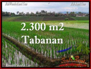 Beautiful TABANAN BALI 2,400 m2 LAND FOR SALE TJTB263