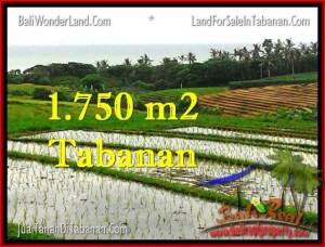 Affordable PROPERTY 1,775 m2 LAND SALE IN TABANAN BALI TJTB264