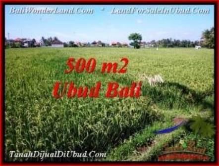 FOR SALE Affordable 500 m2 LAND IN UBUD TJUB545