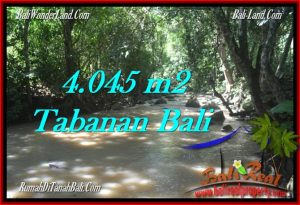 FOR SALE Exotic 4,045 m2 LAND IN TABANAN TJTB277
