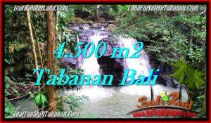 FOR SALE Exotic LAND IN Tabanan Selemadeg BALI TJTB283