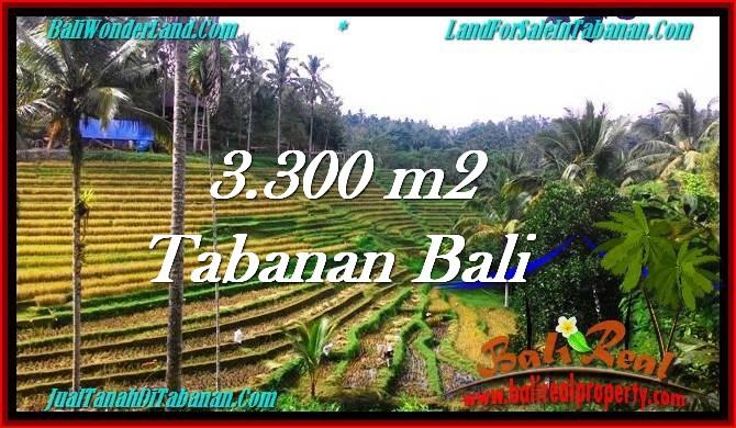 Exotic PROPERTY 3,300 m2 LAND IN Tabanan Selemadeg FOR SALE TJTB274