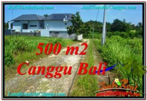 Exotic PROPERTY 500 m2 LAND FOR SALE IN CANGGU BALI TJCG201