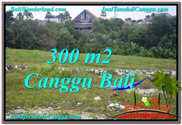 Beautiful PROPERTY CANGGU BALI 300 m2 LAND FOR SALE TJCG205