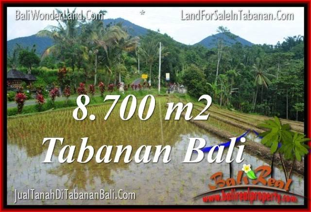 FOR SALE 8,700 m2 LAND IN TABANAN TJTB316