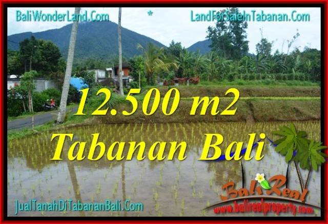 Exotic 12,500 m2 LAND SALE IN Tabanan Penebel BALI TJTB317