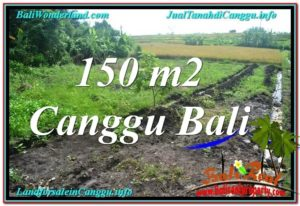 Beautiful PROPERTY 150 m2 LAND FOR SALE IN CANGGU BALI TJCG213