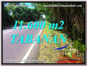 Affordable PROPERTY Tabanan Selemadeg LAND FOR SALE TJTB327