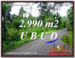 Exotic PROPERTY LAND SALE IN UBUD TJUB591
