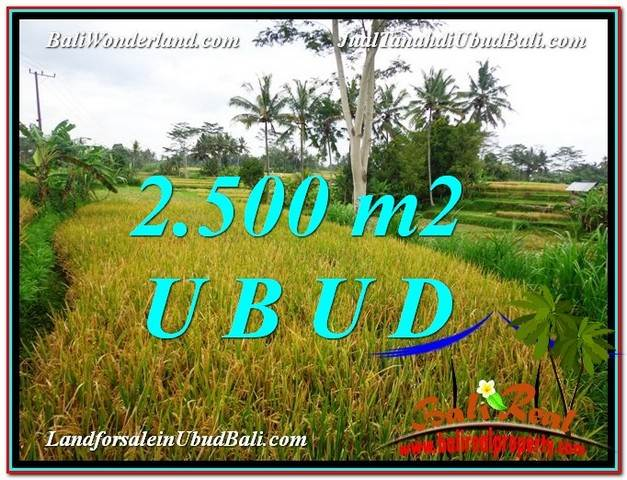 Magnificent 2,500 m2 LAND SALE IN UBUD BALI TJUB577