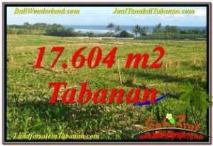 Beautiful PROPERTY TABANAN 17,604 m2 LAND FOR SALE TJTB342