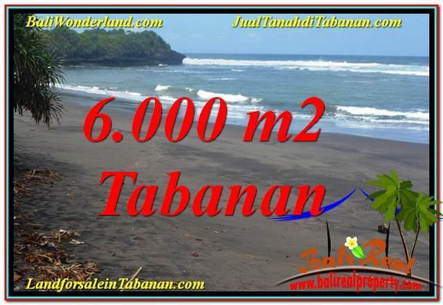 6,000 m2 LAND IN Tabanan Selemadeg BALI FOR SALE TJTB345