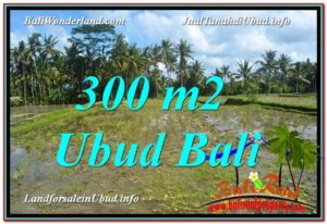 Exotic UBUD BALI 300 m2 LAND FOR SALE TJUB619