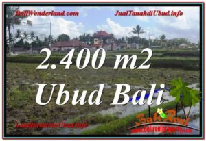 FOR SALE Exotic 2,400 m2 LAND IN UBUD TJUB620