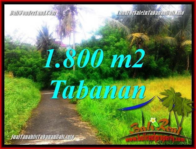 Magnificent 1,850 m2 LAND IN Tabanan Selemadeg FOR SALE TJTB357
