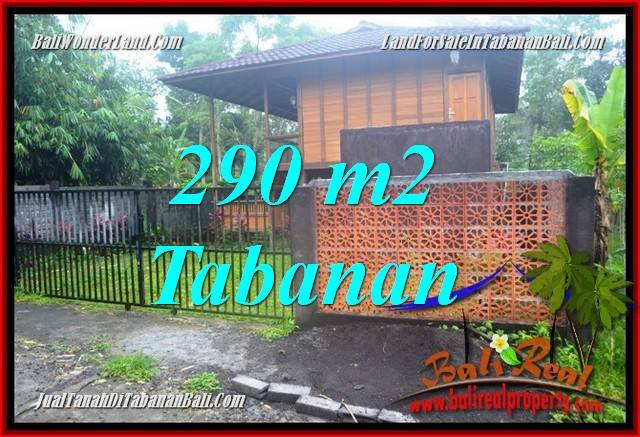 Magnificent PROPERTY 290 m2 LAND IN TABANAN BALI FOR SALE TJTB358