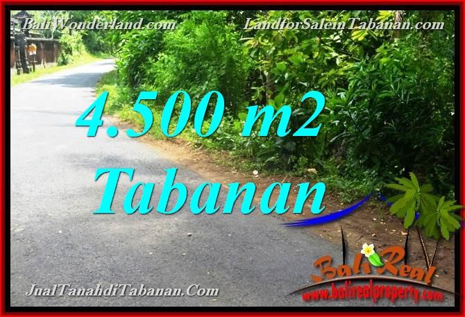 Beautiful PROPERTY 4,500 m2 LAND SALE IN Tabanan Selemadeg BALI TJTB380