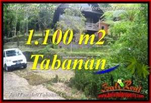 Beautiful PROPERTY Tabanan Bedugul BALI 1,100 m2 LAND FOR SALE TJTB371