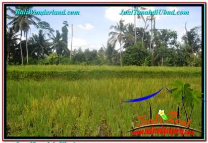 FOR SALE Affordable PROPERTY LAND IN UBUD TJUB649
