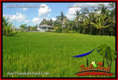 Exotic 1,100 m2 LAND FOR SALE IN Ubud Pejeng TJUB651