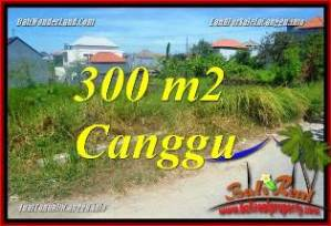 Magnificent CANGGU BALI 300 m2 LAND FOR SALE TJCG225