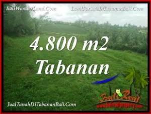 Magnificent PROPERTY TABANAN SELEMADEG BALI LAND FOR SALE TJTB387