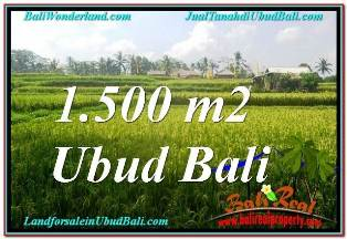 Beautiful PROPERTY 1,500 m2 LAND SALE IN UBUD TEGALALANG TJUB667