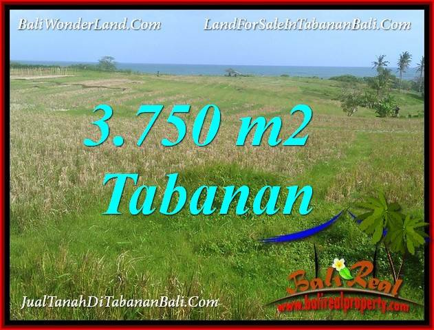 FOR SALE Beautiful 3,750 m2 LAND IN TABANAN SELEMADEG TJTB382