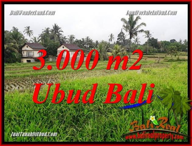 Affordable Property 3,000 m2 Land sale in Ubud Tegalalang TJUB698
