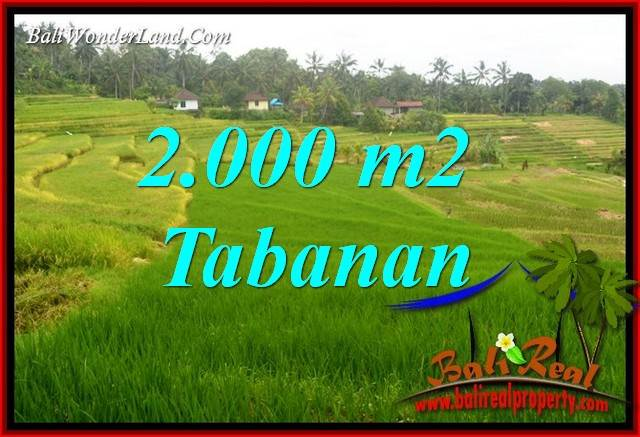 FOR sale Affordable Property 2,000 m2 Land in Tabanan Selemadeg TJTB396