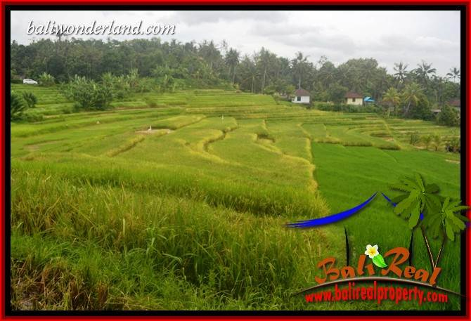 Exotic Property 2,000 m2 Land sale in Tabanan Selemadeg TJTB396