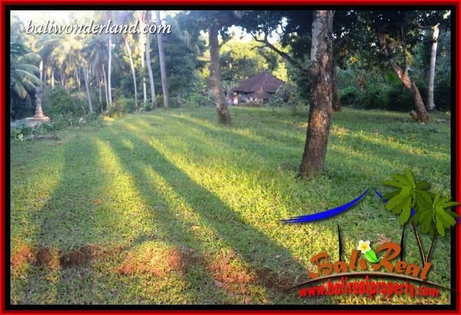 Land sale in Tabanan Selemadeg Bali TJTB408