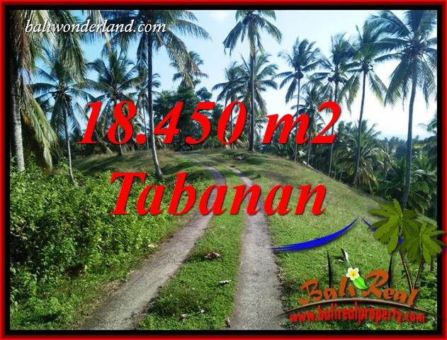Beautiful Property Land for sale in Tabanan Bali TJTB410