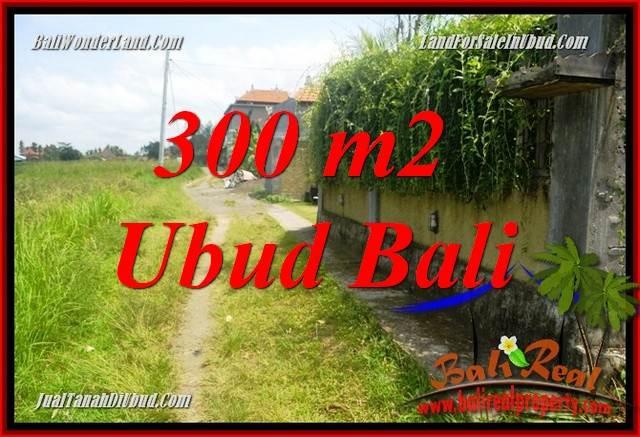 Beautiful Lod Tunduh Bali 300 m2 Land for sale TJUB687