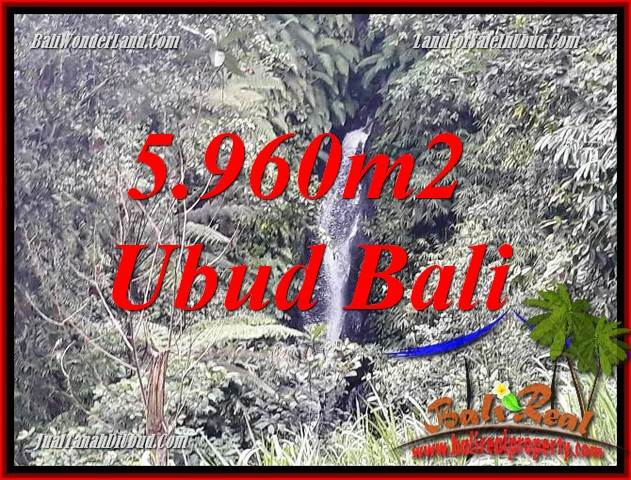 Beautiful 5,960 m2 Land sale in Ubud Payangan TJUB696