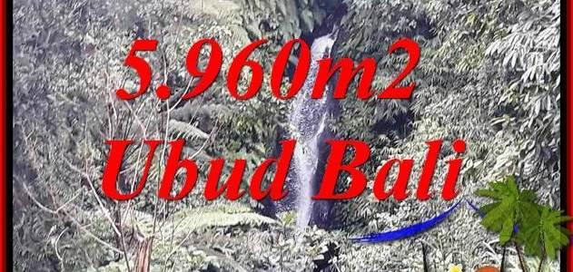 FOR sale Affordable Property 5,960 m2 Land in Ubud Payangan TJUB696