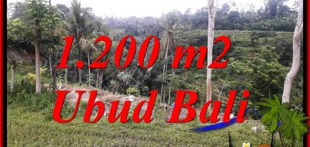 Exotic 1,200 m2 Land in Ubud Bali for sale TJUB699