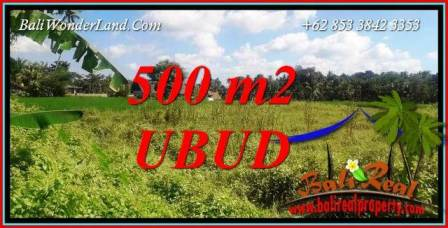 Affordable Property 500 m2 Land sale in Sentral Ubud Bali TJUB724