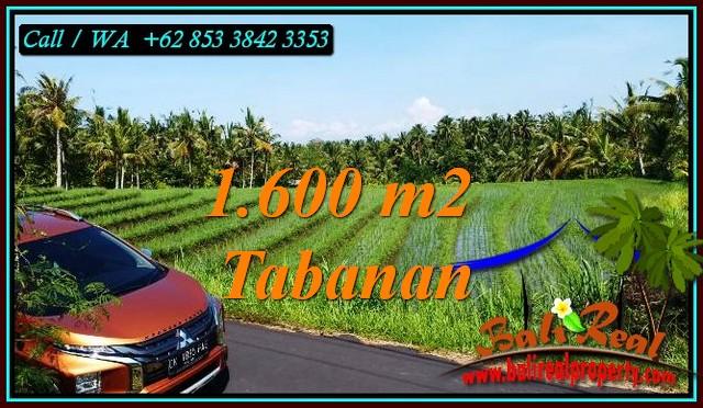 FOR SALE Affordable LAND IN TABANAN BALI TJTB471