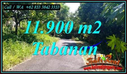 Affordable 11,900 m2 LAND FOR SALE IN SELEMADEG BARAT BALI TJTB474