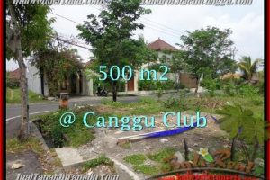 Beautiful PROPERTY LAND IN Canggu Brawa BALI FOR SALE TJCG176
